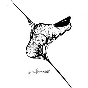 اثر فرشید پارسی کیا از مجموعه بیلاخ های محض