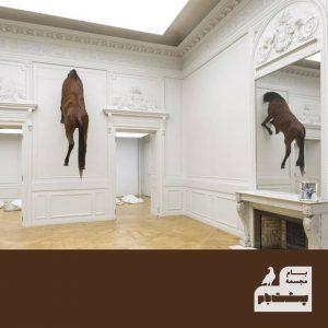 اسب- دیوار- موزه- آمریکا