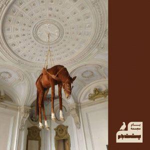 موزه- آمریکا- سقف