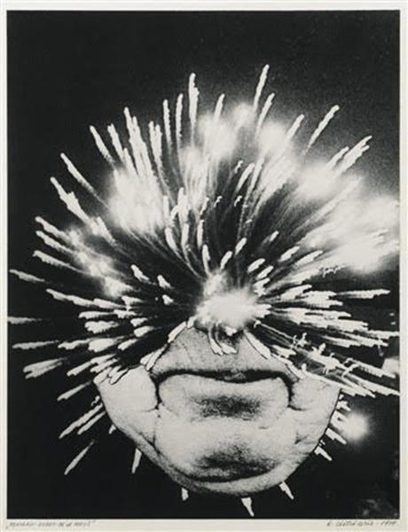 PORTRAIT-ROBOT DE LA POÉSIE , 1978