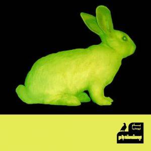 خرگوش تراژن کاک آثار کاک