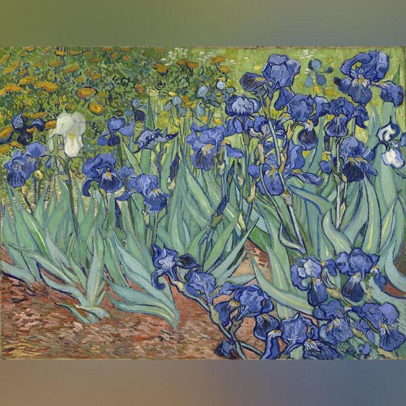 تابلو Irises اثر ون گوک