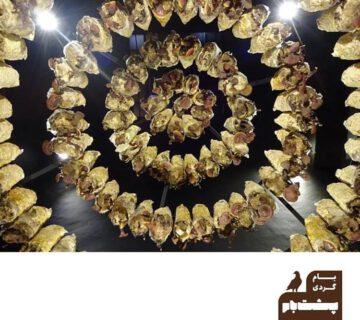 نمایشگاههای گالری محسن