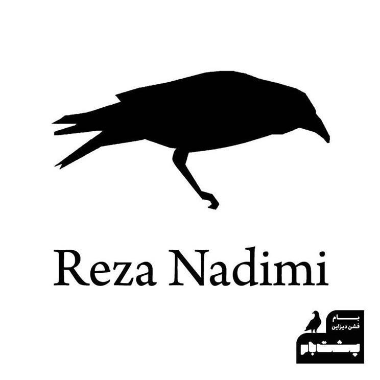 رضا ندیمی